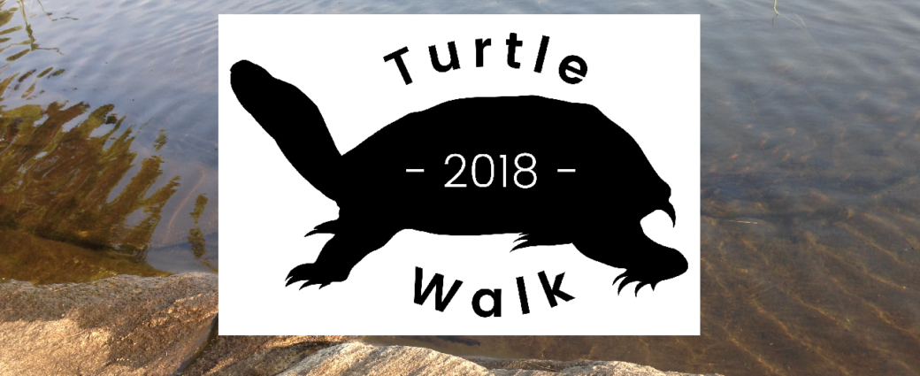 Turtle Walk 2018