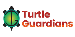 Turtle Guardians